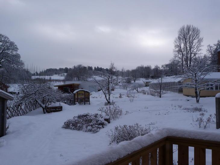 Camphill Rotvoll om vintern